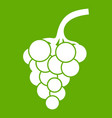 grape branch icon green vector image vector image