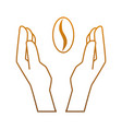 hands protected coffee seed isolated icon vector image vector image