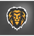 lion head Sport mascot vector image