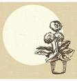 postcard with gerberas vector image vector image