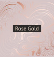 rose gold abstract decorative background rose vector image vector image