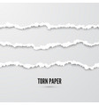 set horizontal seamless torn paper stripes vector image vector image