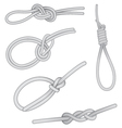 Set of knots vector image