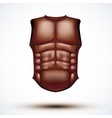 Brown leather ancient gladiator body armor vector image vector image