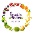 exotic fruits round rainbow frame vector image
