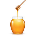 glass jar honey with wooden drizzler isolated vector image vector image