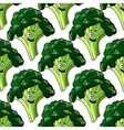 Head of fresh healthy broccoli seamless pattern vector image