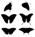 silhouettes butterflies vector image vector image