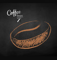 chalk drawn sketch of one coffee bea vector image vector image