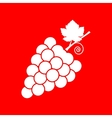 Grapes sign vector image vector image