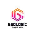 hexagon letter g logo vector image vector image