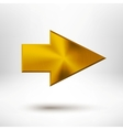 Right Arrow Sign with Gold Metal Texture vector image