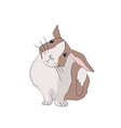 hare sits vector image vector image