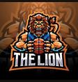 lion sport esport mascot logo vector image vector image