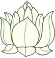 white lotus icon vector image
