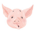 adorable pig character surprised cute little vector image