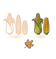 cartoon corn and leaf line and colorful cor vector image