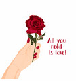 happy valentines day hand with red roses vector image