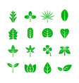 leaf icon nature and environment concept vector image vector image