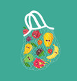 mesh bag with funny fruits vector image vector image