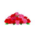 rose flower ornament decoration vector image vector image