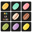 collection of macaron vector image