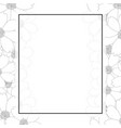 cosmos flower outline banner card border vector image vector image