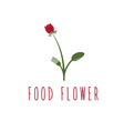 food flower concept design template vector image vector image