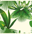 tropical leaves seamless white background vector image vector image