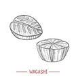 wagashi in hand drawn style vector image vector image