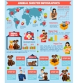 animal shelter infographics vector image vector image