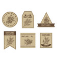 craft labels with juniper vector image