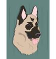 dog portrait profile look down vector image vector image