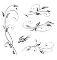 floral decor with bird swirl line stylish flower vector image