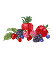 hand drawn background with berries vector image vector image