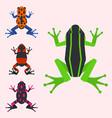 frog cartoon tropical animal cartoon amphibian vector image