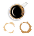 coffee coffee and stain vector image vector image