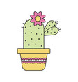evergreen plant cactus in flat style vector image vector image