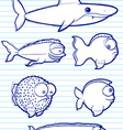 fish drawn vector image
