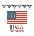 flag united states america design vector image vector image