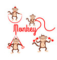monkey fitness logo vector image