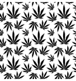 seamless pattern cannabis leaf vector image