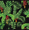 tropical pattern leaves flowers seamless black vector image vector image