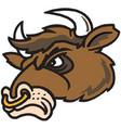 bull head logo mascot vector image vector image