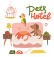 happy dog cat and parrot relax on a hotel bed vector image
