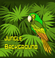 parrot and green leaves vector image vector image
