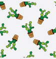 seamless pattern with cacti and succulents vector image vector image