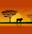 silhouette of lion at lake in savanah vector image