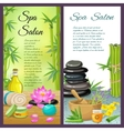 Spa Salon Vertical Compositions vector image vector image