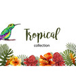 summer tropical exotic leaves and branches vector image